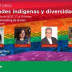 """[Video] (26/jun/2020 17:00 hrs) Conversatorio """"""""Identidades indígenas y diversidad Sexual"""" con @AmarantaMuxe"""