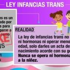 [Imágenes] Fake News sobre #InfanciasTrans elaborado por @InfanciasTrans
